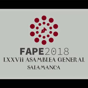 Vídeo resumen #FAPESalamanca2018